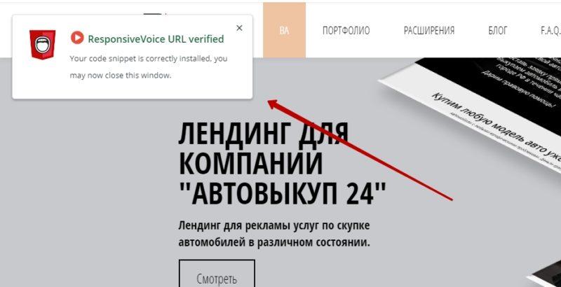 Успешная верификация сайта